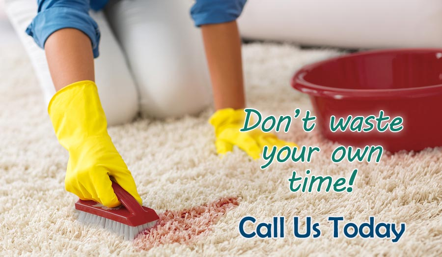 Carpet Cleaning Seasonal Price Special
