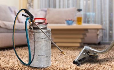 Why Dry Foam Is The Best Carpet Cleaning Method Crystal