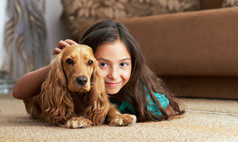 child and dog on clean carpet